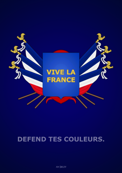 vive_la_france_by_ay_deezy-d3ea9mm
