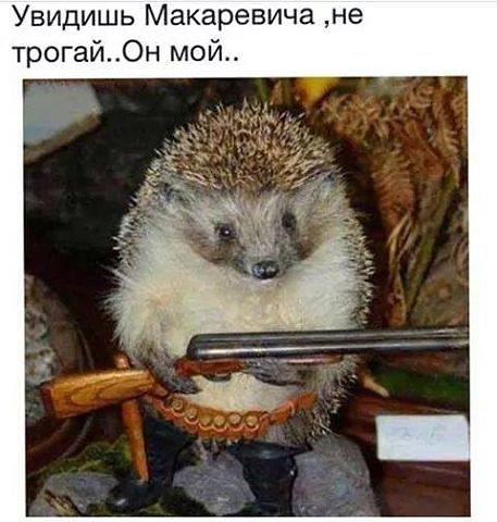 _HuGxP-ybZQ