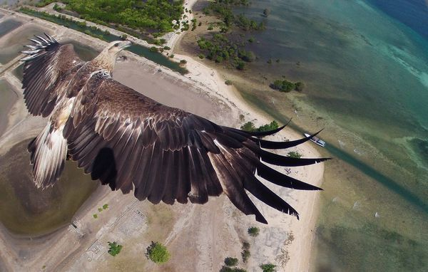 drone-photography-contest-01_81740_600x450