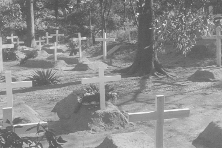 1956 - Бирманская арфа (Кон Итикава).jpg