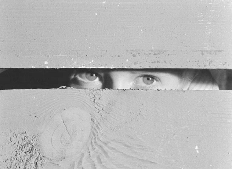 1964 - Добро пожаловать или Посторонним вход воспрещен (Элем Климов).jpg