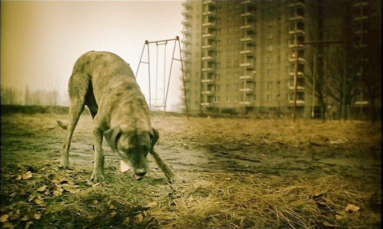 1987 - Короткий фильм об убийстве (Кшиштоф Кесьлевский).jpg
