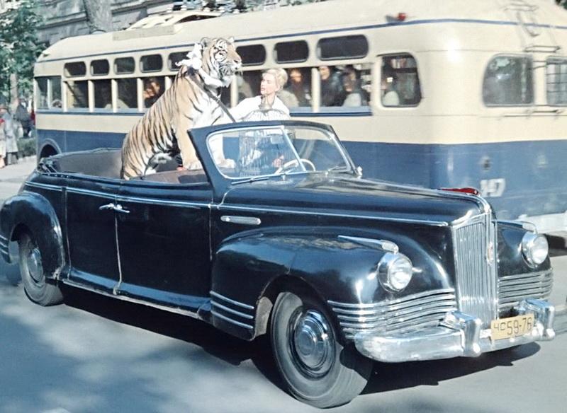 1961 - Полосатый рейс (Владимир Фетин)