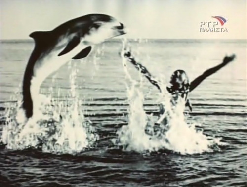 Метичара - зверь морской (Нелли Ненова)