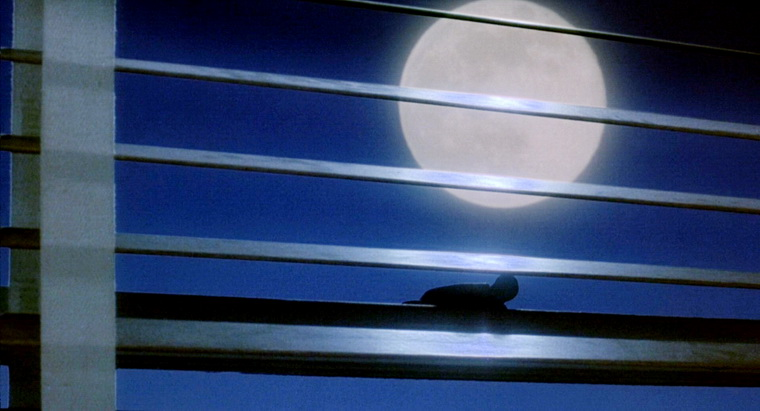 1987 - Во власти луны (Норман Джуисон).jpg