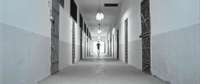 2009 - Просветления Уайта (Доминик Мерфи).jpg