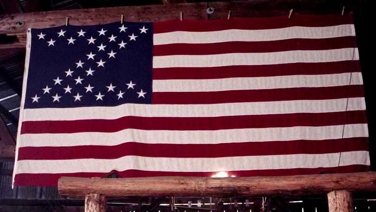 2014 - Нация Z (Джон Хайамс, Тим Кокс, Дэн Мерчант и др.).jpg