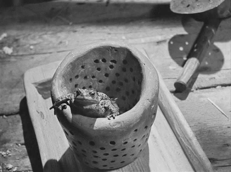 1959 - Девичий источник (Ингмар Бергман).jpg