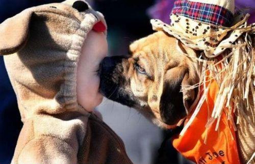 поцелуй дети собаки http://altoliman.livejournal.com/