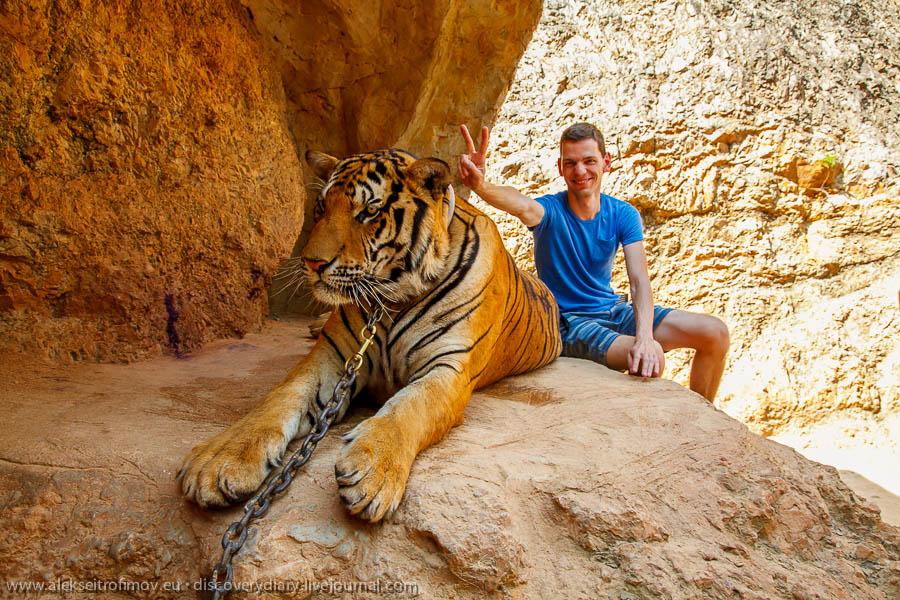 IMG_32601-BANGKOK-TIGER-TEMPLE