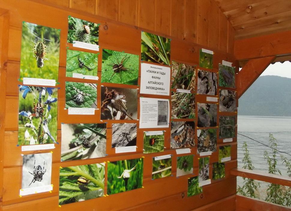 Фотовыставка на экомаршруте Водопад Корбу