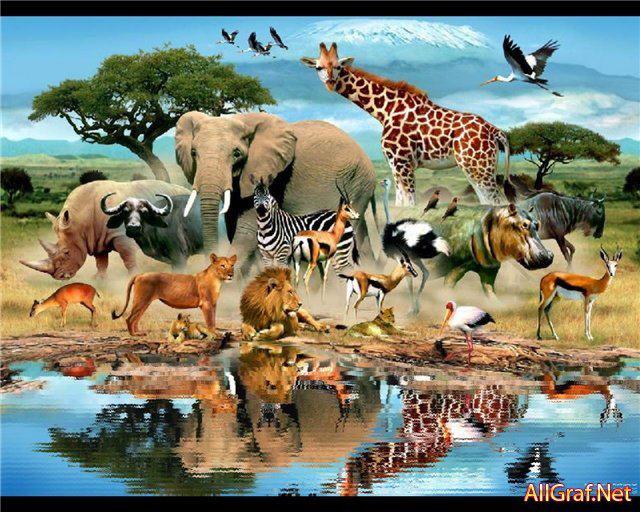 Картинки по запросу Всемирный день животных (World Animal Day), или Всемирный день защиты животных