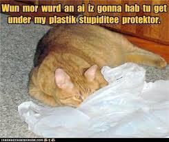 stupidity protector
