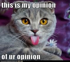 tonguecat