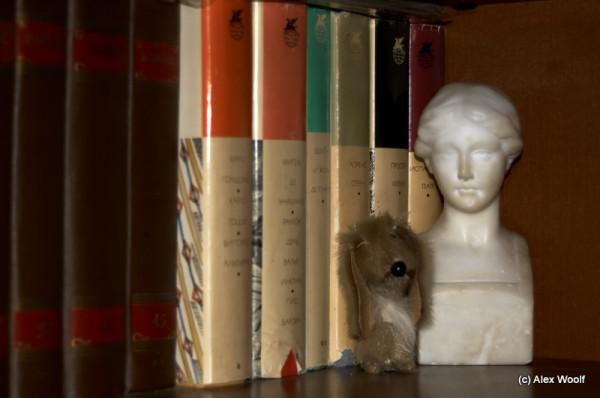 Иностранная литература