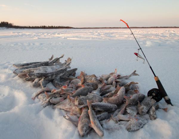 рыбалка на убине
