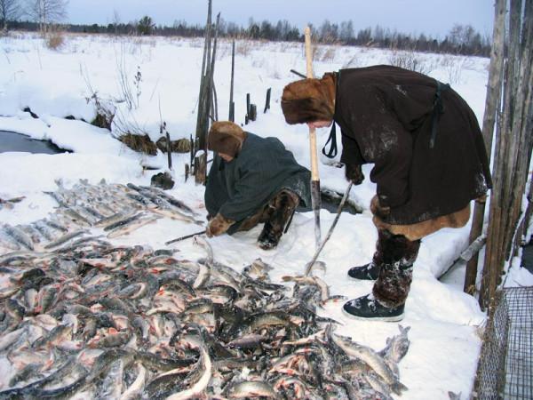 подледная рыбалка видео на севере