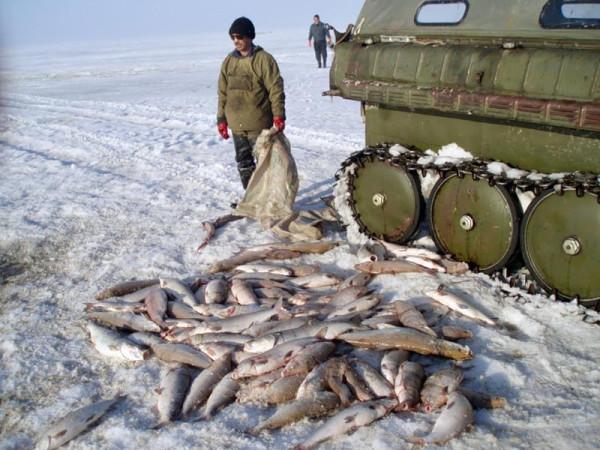 крайний север ловля рыбы видео