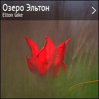 Природа озера Эльтон