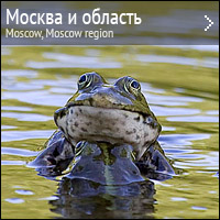 Природа Москвы и Московской области