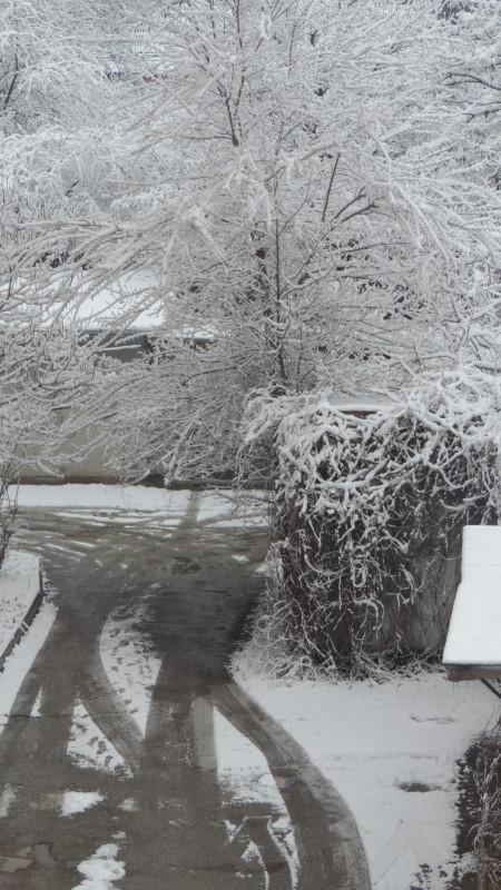 12 марта снег