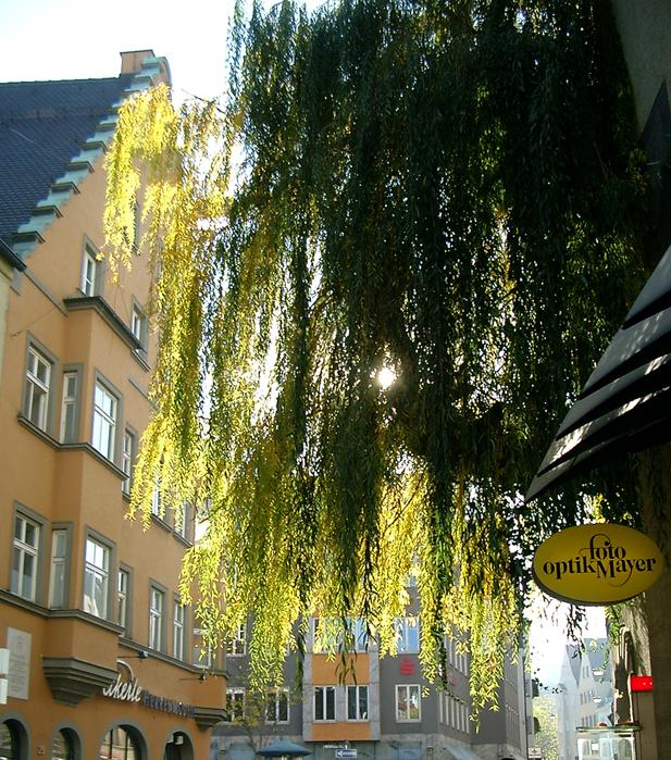 51307948_Augsburg7
