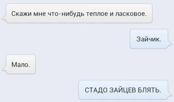 зайчик