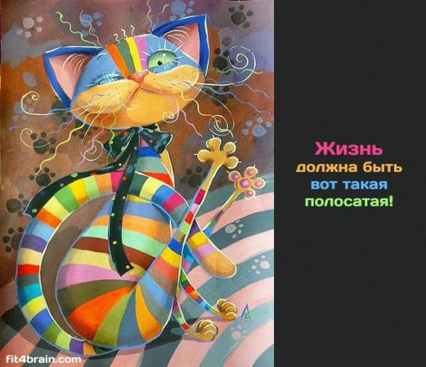 FB_IMG_1432312044232