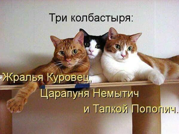 FB_IMG_1439331108505