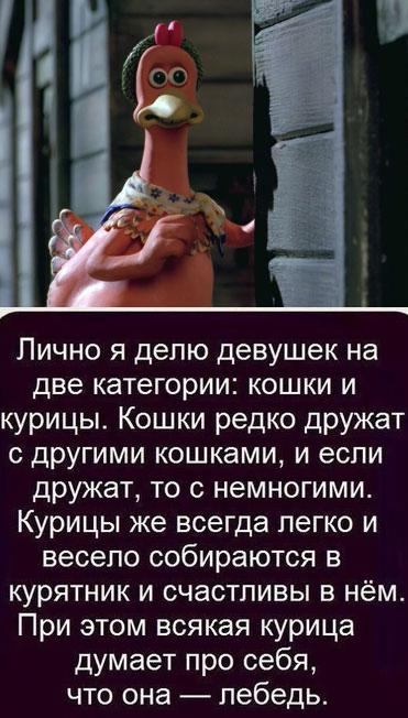 pic_1365772797