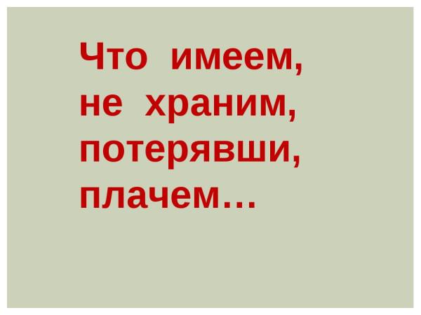 img4.jpg