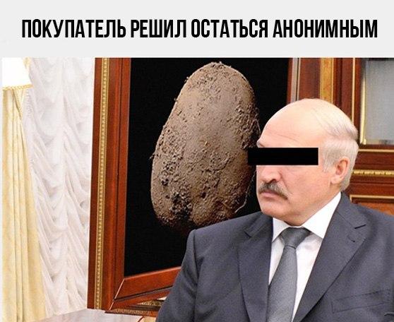 картофель покупатель