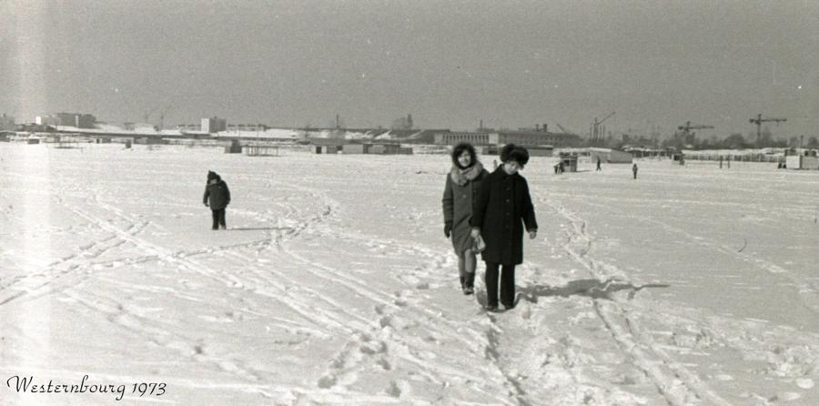 1973 январь 66695 На Измайловском пруду..jpg