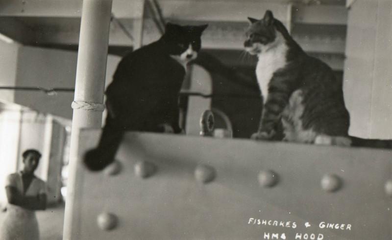 Джинджер и Фишкейкс (Худ) 2