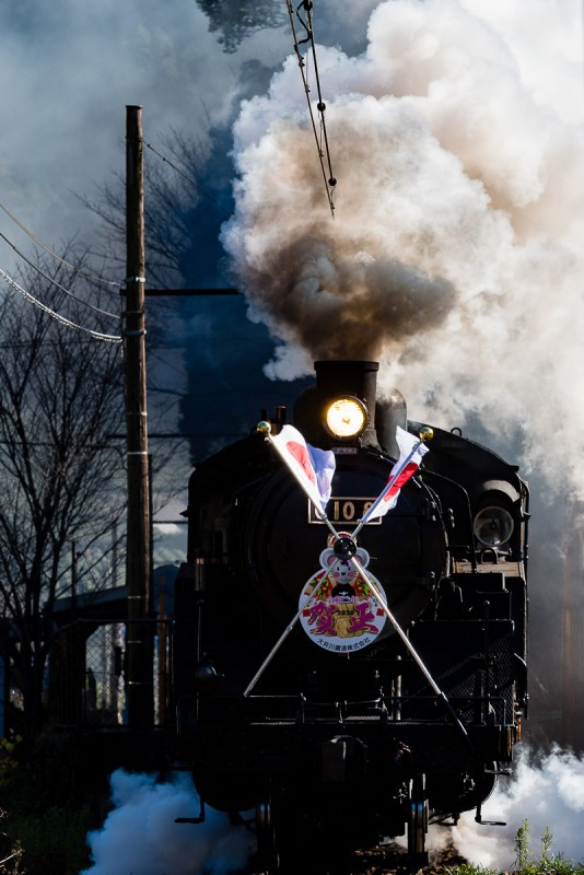1st of January, Oigawa railway's tourist steam train wearing the flags, a tradition from Japan National Railway days for welcoming the new year