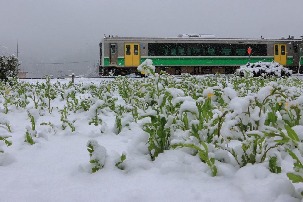 Возле станции Айдзу Накагава