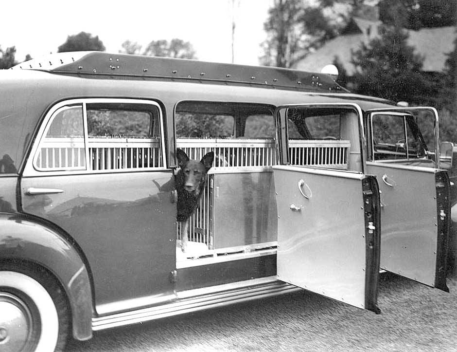 Geraldine Rockefeller Dodge's 'Dog Wagon' were eight door limousines built on extended 1939 Cadillac 'Sixty Special' chassis 2