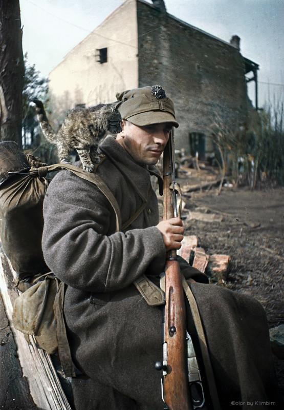 Рядовой Войска Польского. 1944-1945