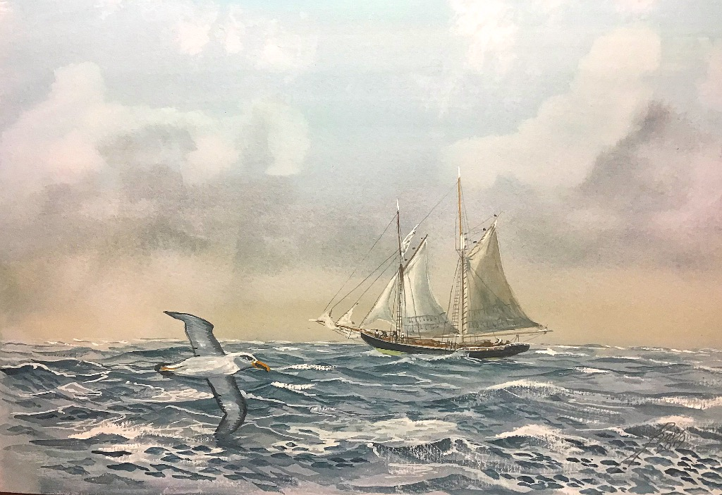 The Schooner ....with Albatross