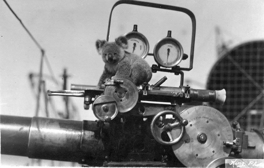WWI. This little Aussie was the mascot for HMAS Warrego (D70), a River-class torpedo-boat destroyer