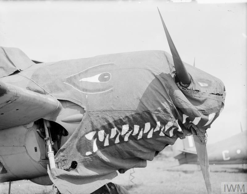 Shark's mouth on the canvas cowling cover of a Fleet Air Arm Martlet ( F4F Wildcat) fighter. HMS Rajaliya, Eastern Fleet airfield, Ceylon, circa 1944