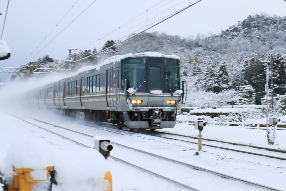 Special Rapid Train running in Shiga prefecture 130168374_3672403569479041_609049832224881340_o