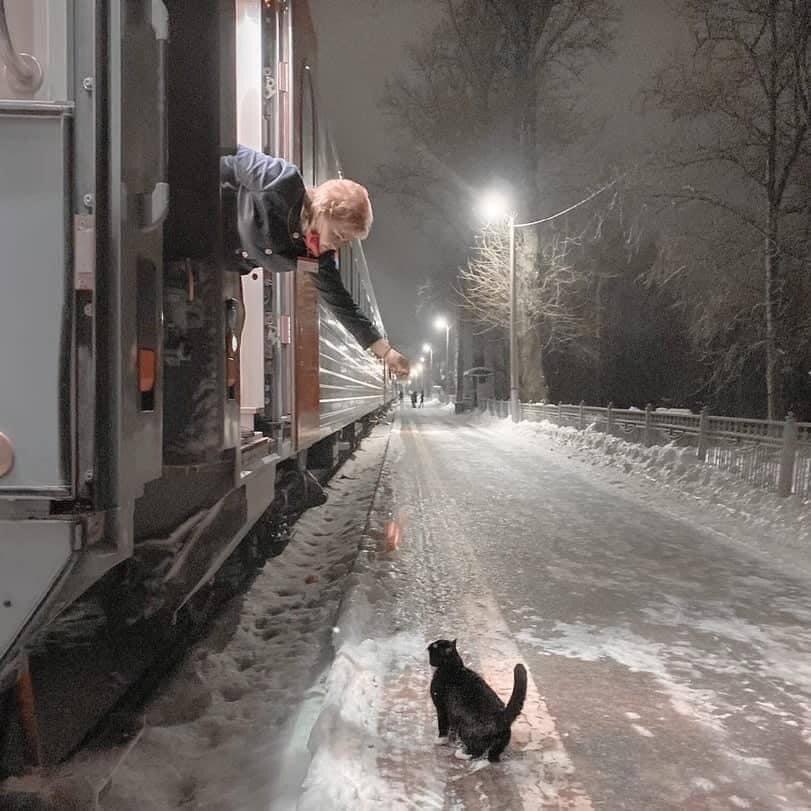 Проводница поезда Псков-Москва кормит кота Феликса во время короткой остановки на Старой Руссе. Феликс приходит каждый день к хвосту поезда в 22:40