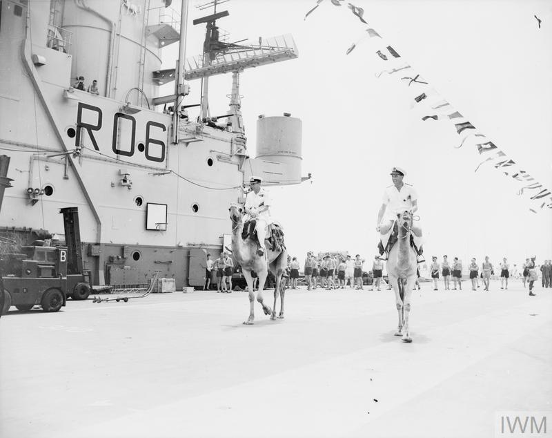 Camels race on board HMS CENTAUR (R 06) in Aden, Febr. 1956.