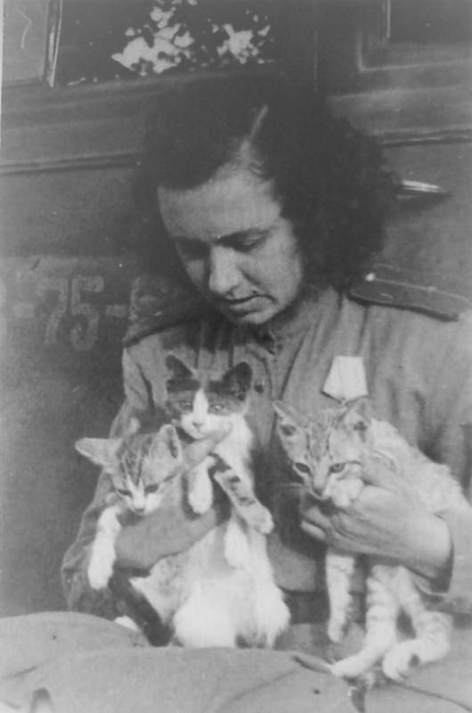 Фоторепортер редакции газеты 3-го Украинского фронта «Советский воин» лейтенант административной службы Ольга Александровна Ландер (1909-1996) с тремя кошками.