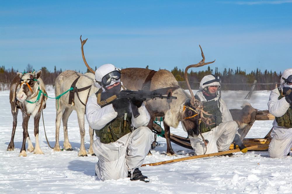 Фоторепортаж из оленеводческого хозяйства Ловозеро Мурманской области, где с разведчиками морской пехоты прошли занятия по освоению традиционных видов транспорта