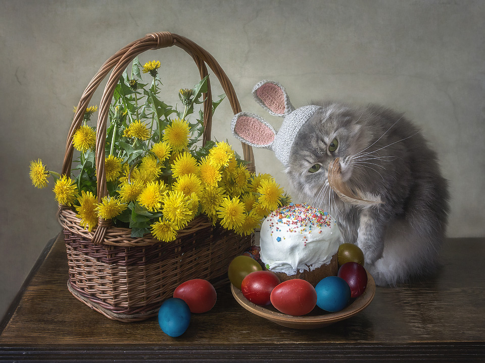 easter_bunny_and_flying_feather_by_daykiney-dc2brnl