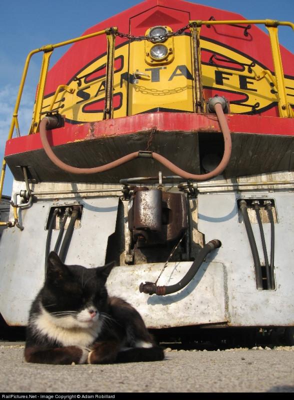 Atchison, Topeka & Santa Fe  EMD FP45  #ATSF 92, Illinois Railway Museum, May 20, 2007
