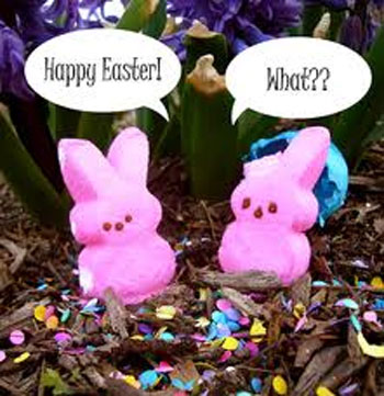 Hoppy Easter To All My Peeps Amygrech