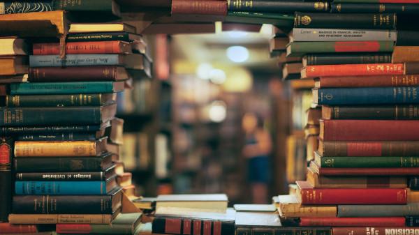 knigi-biblioteka-mnogo